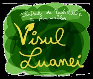 Logo Centru Visul Luanei transparent